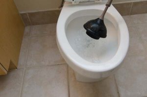 Plunging Toilet