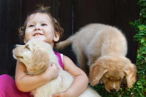 Is Your Home Baby & Puppy Proofed for Your Holiday Party in Lynn, MA?